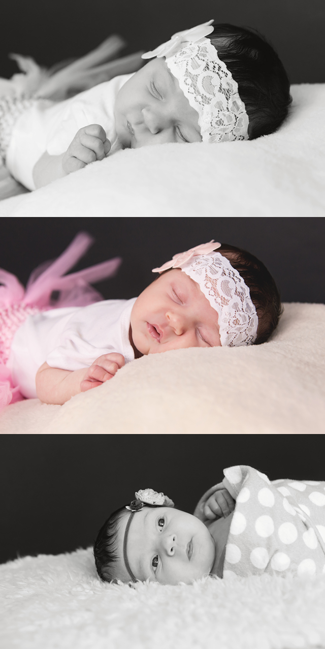 Algonquin Illinois Newborn Photographer